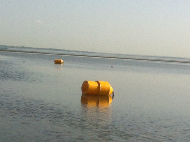yellow buoys